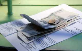Какую госпошлину нужно уплатить, подавая иск об уменьшении алиментов